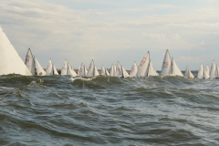 Sailing in waves 2016